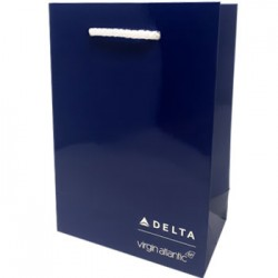 Branded Delta Airlines Gloss Lam Bag