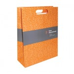 Printed Matt Die Cut Handle Paper Bag for EMIK