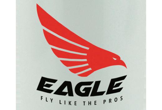 Print logo zoom in example